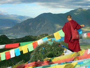 médecine-traditionnelle-tibétaine
