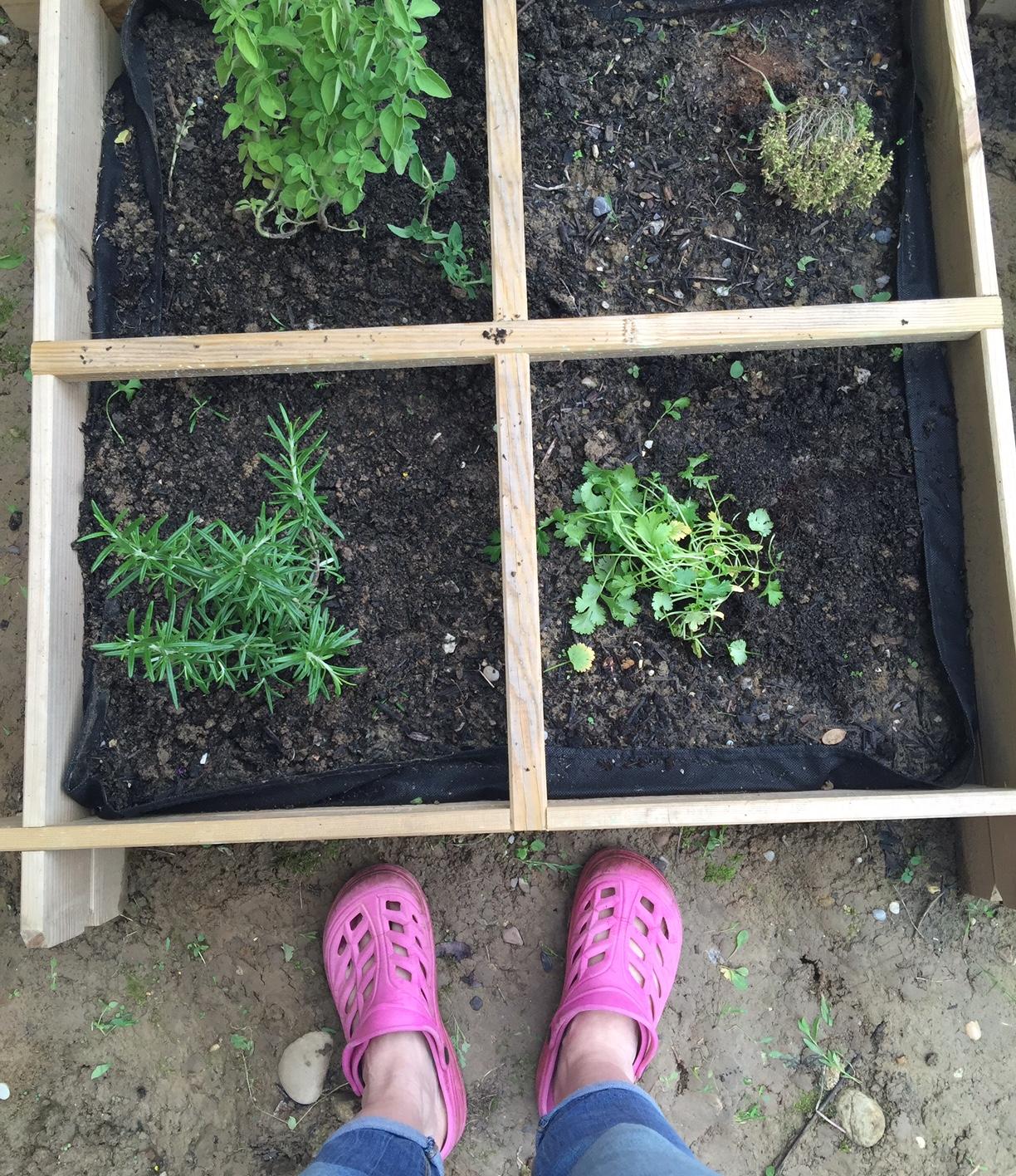 J'ai testé le jardin aromatique